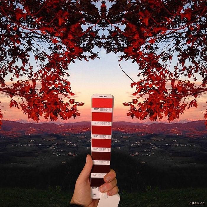 Ver la vida a través de colores Pantone