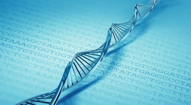 Microsoft avanza hacia el almacenamiento de información en el ADN