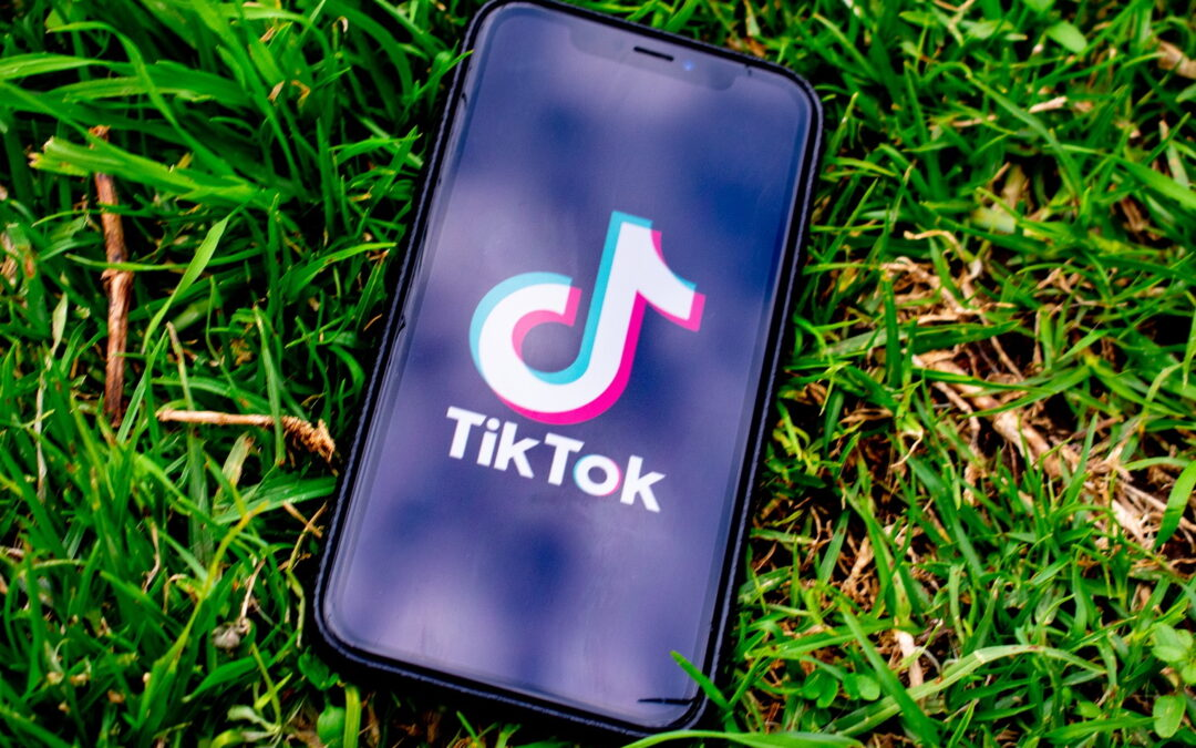 Estos son los negocios más rentables en TikTok
