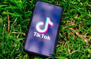 los negocios más rentables en TikTok